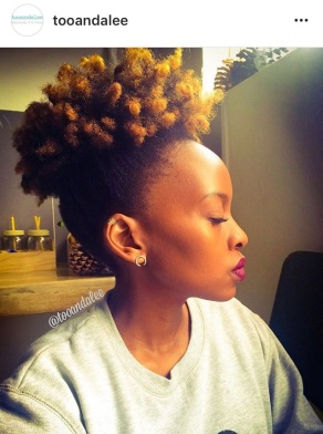 natural-hair-puff-tooandalee